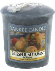 Yankee Candle 1249677E Blissful Autumn Bougie Gris