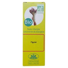 Equi nutri - Bourgeon de figuier bio - flacon 30 ml - Le bourgeon de la détente