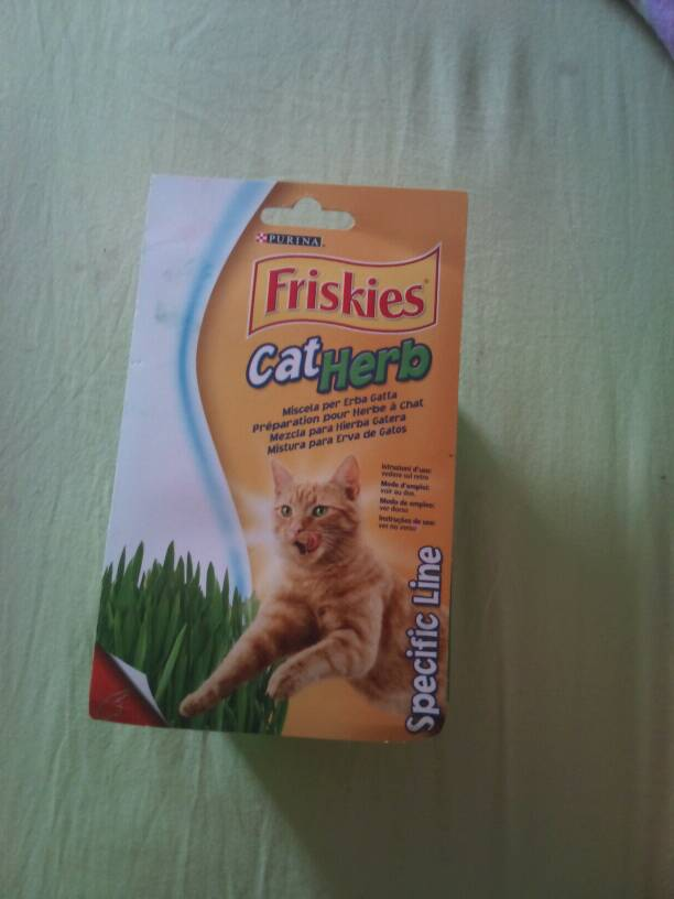 Preparation pour herbe a chat fraiche FRISKIES