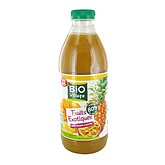 Nectar Bio Village Fruits exotiques - 1L