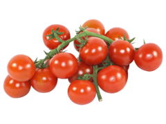 Tomate Cocktail grappe, catégorie Extra, France, barquette 500g