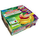 Andros compote pomme banane 4x100g