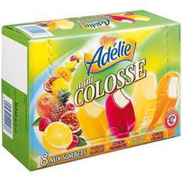 Adelie, Mini mix sorbets, les 8 mini sorbets de 45ml