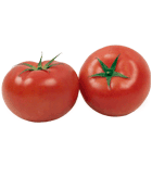 Tomate ronde Cal 57-67 mm Cat 1