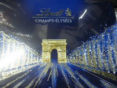 Chocolats assortis Champs Elysees LINDT, 1kg