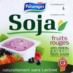 Soja fruits rouges, specialite au soja, 100% vegetal, 4 x 100g, 400g