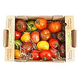 Tomate collection gourmande Plateau 1,5kg