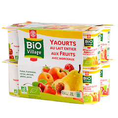 Yaourts fruits Bio Village Panaches 12x125g