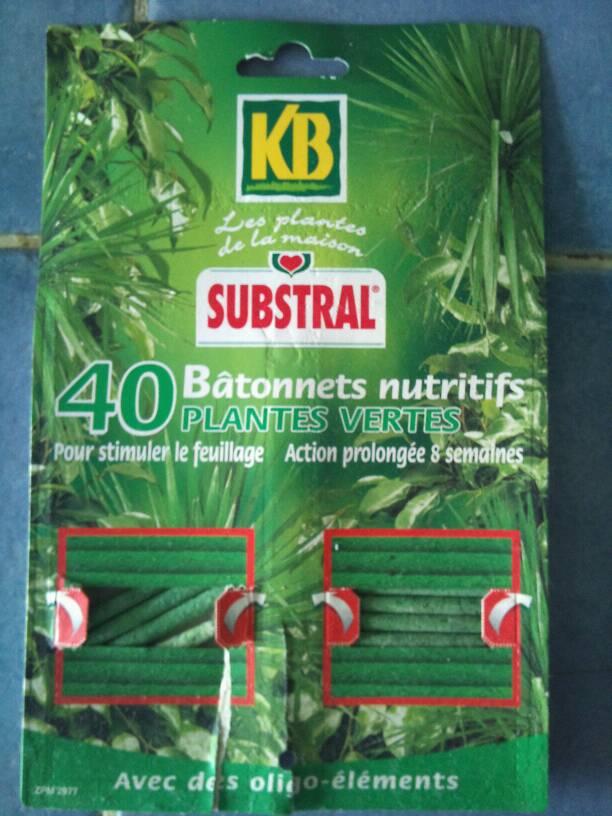 batonnets nutritifs plantes vertes tous les produits insecticides prixing. Black Bedroom Furniture Sets. Home Design Ideas