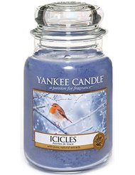 Yankee Candle Housewarmer Bougie Pointes de glace Grande jarre 623 g