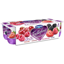 Taillefine fruits rouges 0% 8x125g