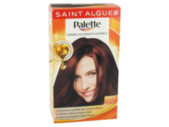 Saint Algue Palette Coloration chocolat griotte n°860