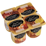 yaourt aux fruits patissiers 4x125g