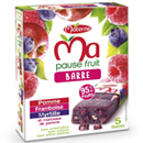 Materne ma pause fruits barre pomme myrtille framboise 5x20g