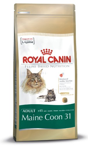 Royal Canin Breed Nutrition Maine Coon 31 - Croquettes - Sac de 2kg