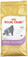 Corquettes pour chat Breed Nutrition British shorthair